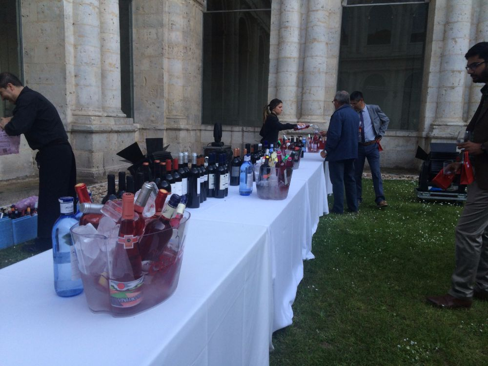 The Spanish Wine, Vino Espanol, Cigales wines, wine ceremony, Valladolid