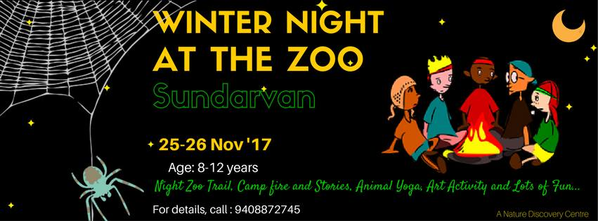 Winter Night At The Zoo