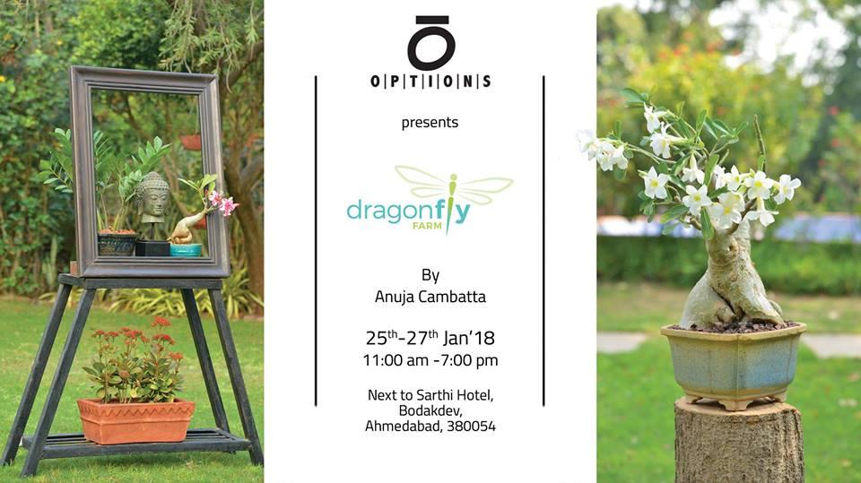https://creativeyatra.com/wp-content/uploads/2018/01/Gardening-Show-Anuja-Cambatta-Dragonfly-Farm.jpg