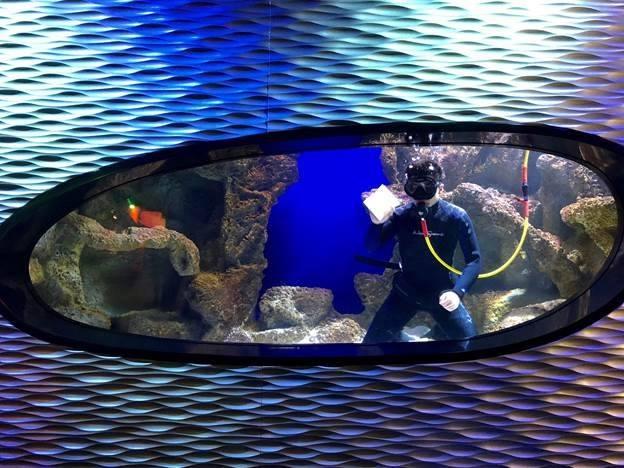 behind-the-scenes-aquarium-tour