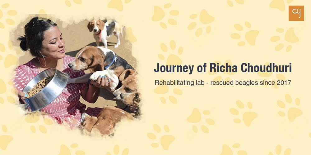 Journey of Richa Choudhuri : Rehabilitating lab - rescued beagles since 2017
