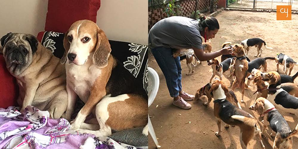 Richa Choudhuri and Her Freagles Dogs