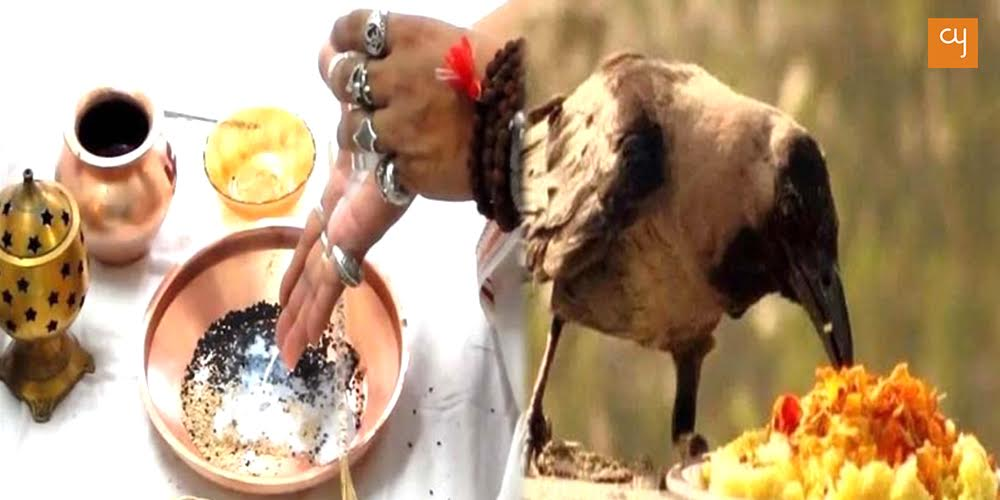 Shradh, Crow Feeding and Tarpan Ritual