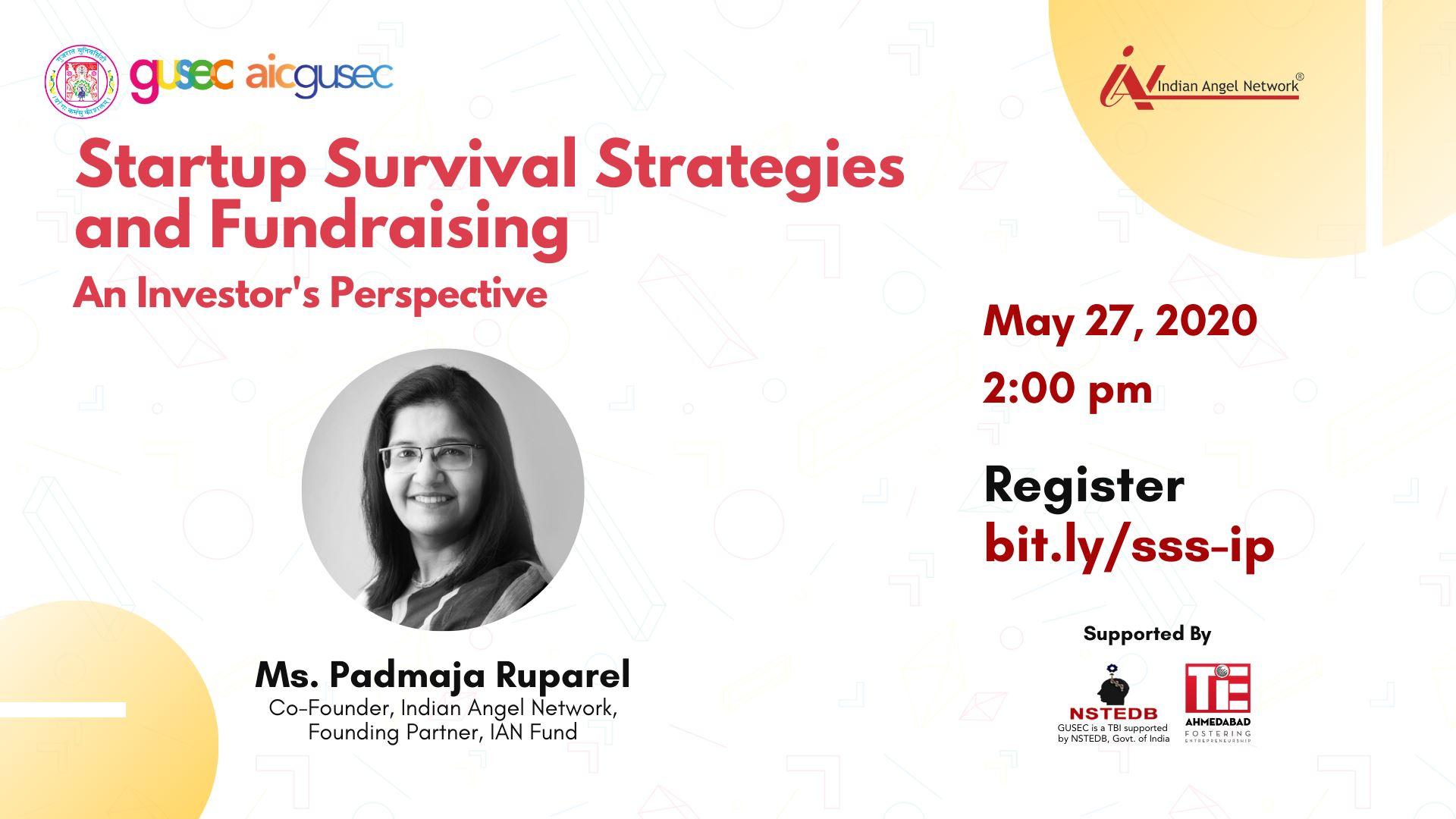 Startup Survival Strategies an ...